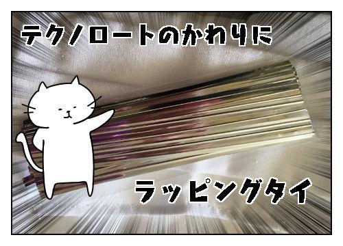 f:id:nekowamegusuri163:20200226100244j:plain