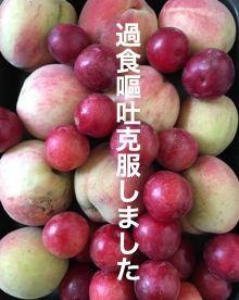 f:id:nekowamegusuri163:20200421095136j:plain