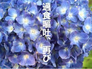 f:id:nekowamegusuri163:20200421095204j:plain