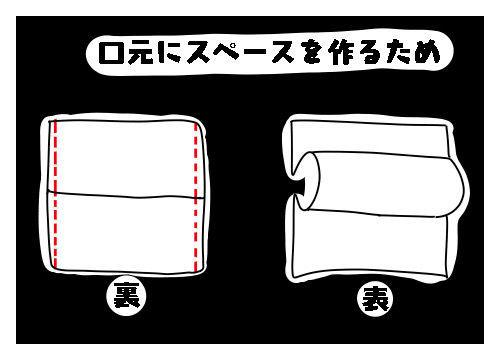 f:id:nekowamegusuri163:20200502114734j:plain