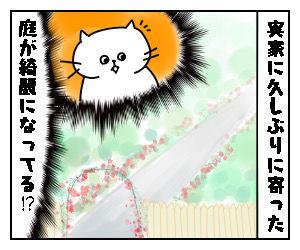 f:id:nekowamegusuri163:20200506114400j:plain