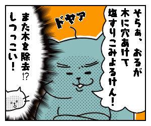 f:id:nekowamegusuri163:20200506114513j:plain