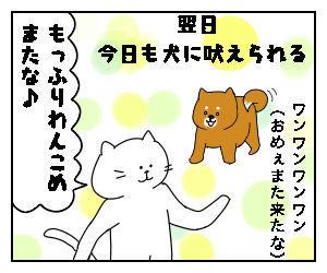 f:id:nekowamegusuri163:20200510160631j:plain