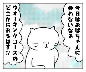 f:id:nekowamegusuri163:20200510160645j:plain