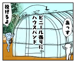 f:id:nekowamegusuri163:20200517101130p:plain