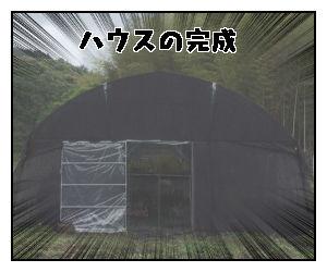 f:id:nekowamegusuri163:20200517101134j:plain