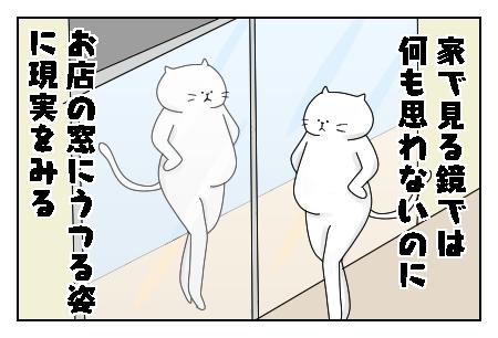 f:id:nekowamegusuri163:20200529143137p:plain