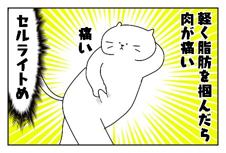 f:id:nekowamegusuri163:20200529143140p:plain