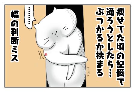 f:id:nekowamegusuri163:20200530090003p:plain