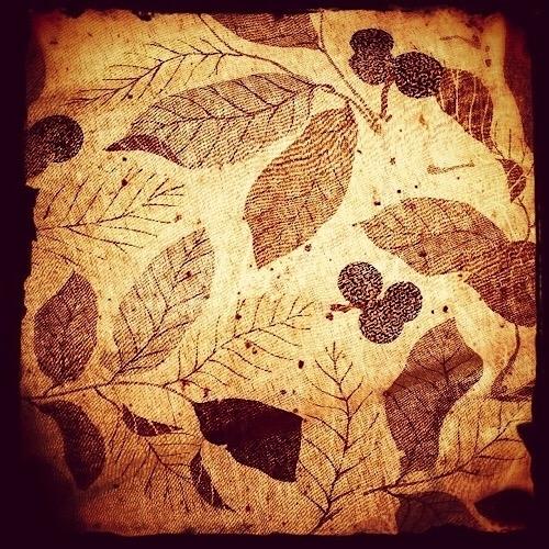 leaves in my bedroom