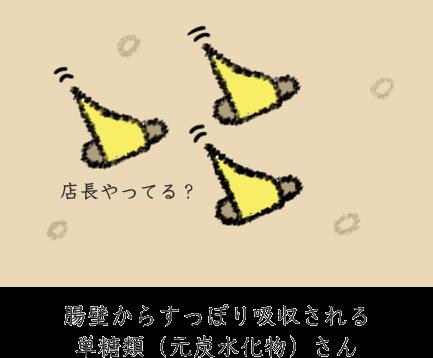 小腸に吸収される糖