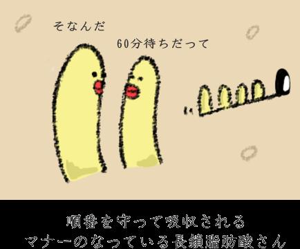 長鎖脂肪酸の特徴