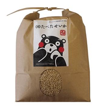 九州産 熊本産 発芽玄米 無農薬
