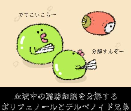 f:id:nekoyamachan:20161209133533p:plain