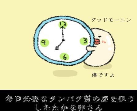 f:id:nekoyamachan:20170224214326p:plain