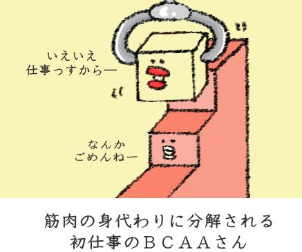 f:id:nekoyamachan:20170303163601p:plain