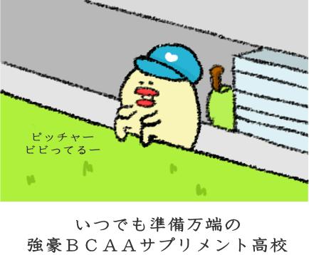 f:id:nekoyamachan:20170303163620p:plain