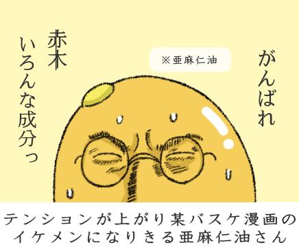 f:id:nekoyamachan:20170310135128p:plain