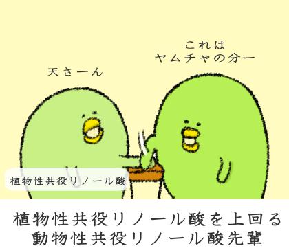 動物性共役リノール酸と植物性共役リノール酸