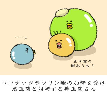 f:id:nekoyamachan:20170405162139p:plain