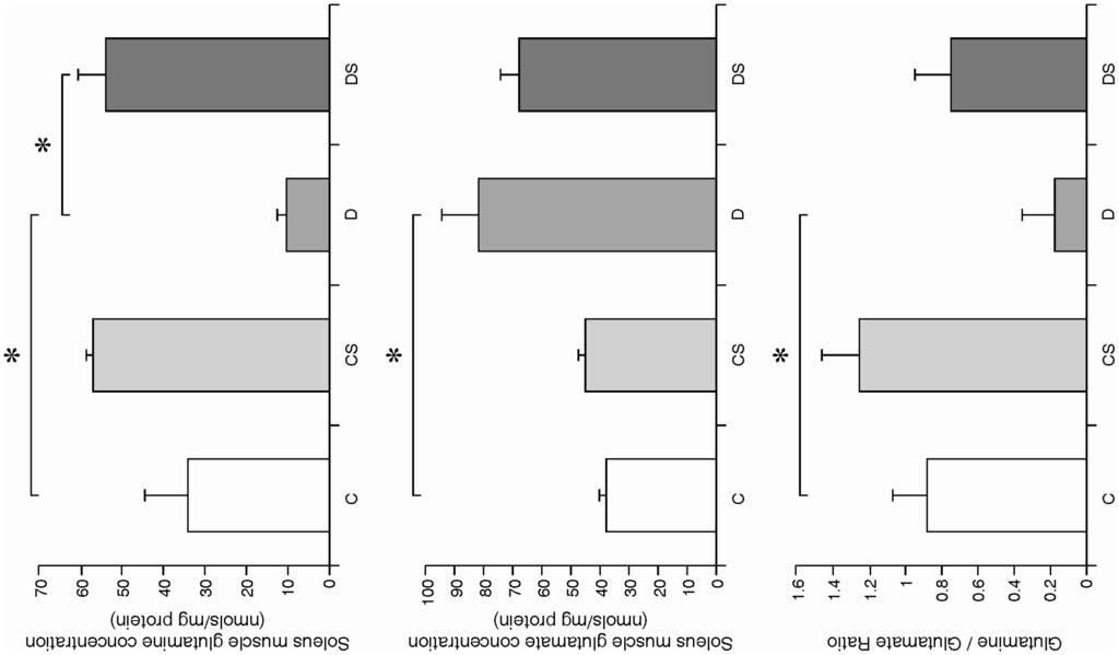 ラットのヒラメ筋グルタミン濃度を検証