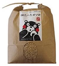28年 九州産 熊本産 発芽玄米 無農薬 3kg