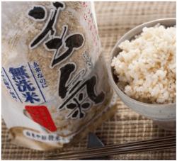 28年産 九州佐賀県産 特別栽培 無洗米 発芽玄米 玄氣(げんき)