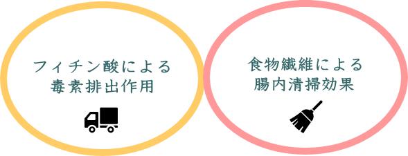 玄米七号食のデトックスを達成する2つの要素