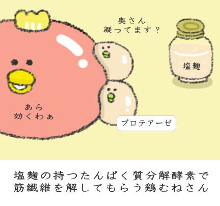 塩麹の持つたんぱく質分解酵素で筋繊維を解してもらう鶏むねさん