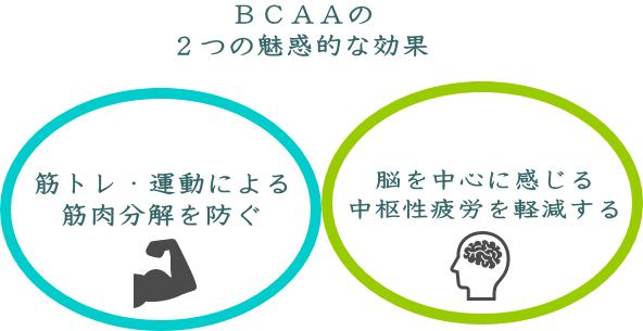 BCAAの最大の特徴