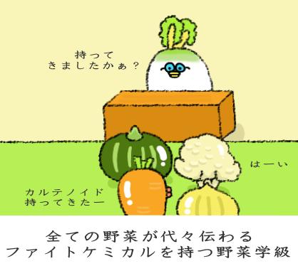 全ての野菜が代々伝わるファイトケミカルを持つ野菜学級
