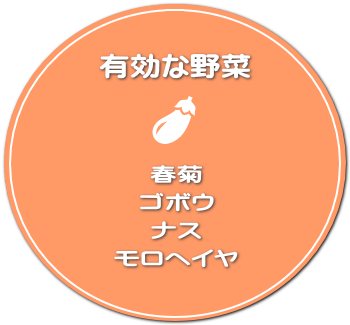 春菊・ゴボウ・ナス・モロヘイヤ