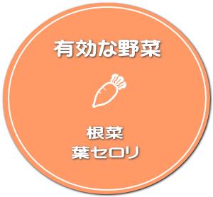 根菜と葉セロリ