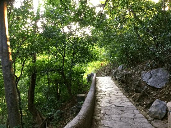 七星公園内の遊歩道