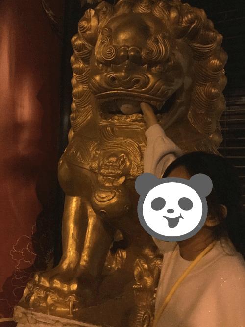 f:id:nekoyamachan:20180509135623p:plain