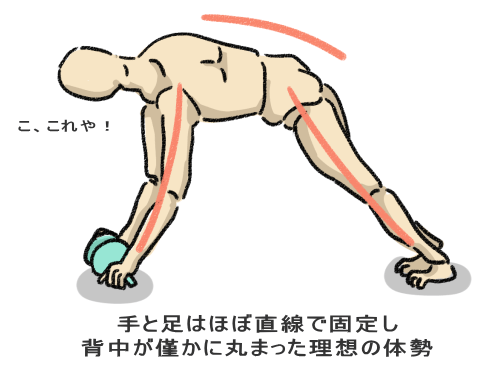 手と足はほぼ直線で固定し 背中が僅かに丸まった理想の体勢