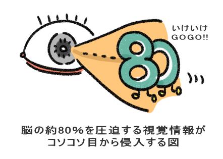 脳の約80%を圧迫する視覚情報が コソコソ目から侵入する図