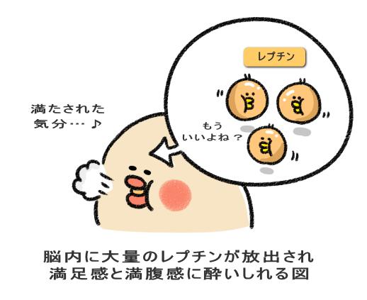 f:id:nekoyamachan:20180801141354p:plain