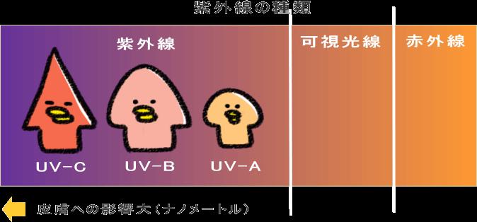紫外線←可視光線←赤外線