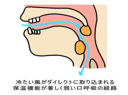 保温機能が著しく弱い口呼吸の経路