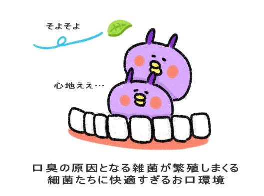 口臭の原因となる雑菌が繁殖しまくる 細菌たちに快適すぎるお口環境