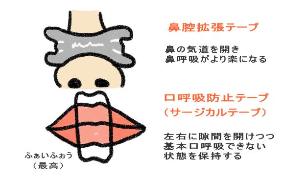 鼻腔拡張テープ+サージカルテープ