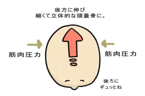 小顔に認識されやすい形