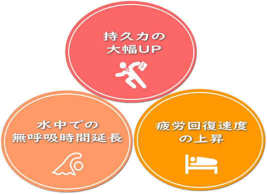 (持久力の大幅UP 水中での無呼吸時間の延長 疲労回復速度の上昇)