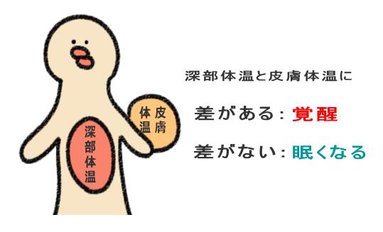 深部体温と皮膚体温に差があると覚醒、差が縮まると眠い