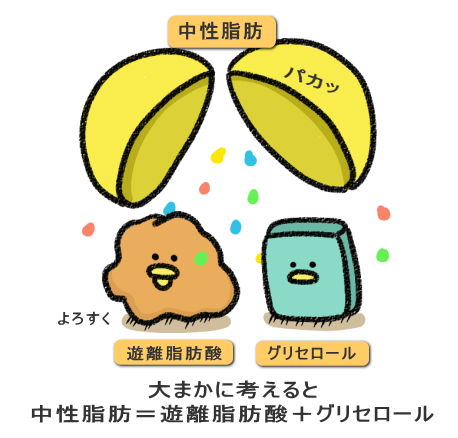 f:id:nekoyamachan:20181125100447p:plain