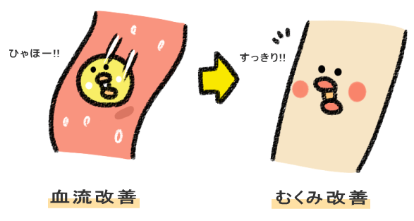 血流改善→足の水分(むくみ)が排出される図