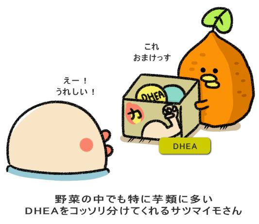 野菜の中でも特に芋類に多い DHEAをコッソリ分けてくれるサツマイモさん