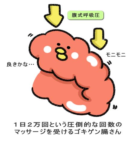 1日2万回という圧倒的な回数の マッサージを受けるゴキゲン腸さん
