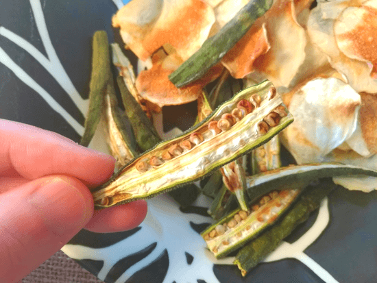 ノンオイル野菜チップス(おくら)